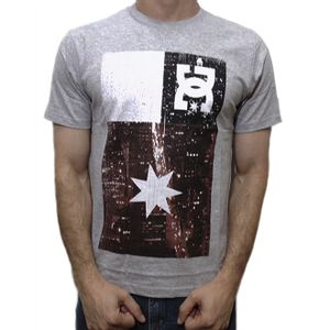 camiseta-dc-shoes-core-flag-cinza