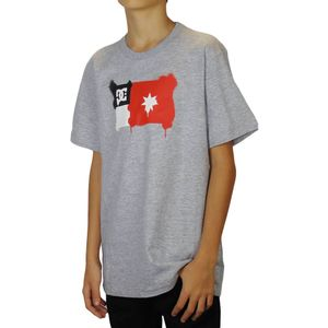 Camiseta-DC-Shoes-Core-Spray-Flag-Mescla-Juvenil-