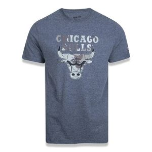 Camiseta-new-era-nba-chicago-bulls-desert-camo-box-cinza-1
